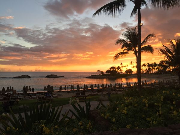 Disney, Aulani And The Power Of Experiential Storytelling